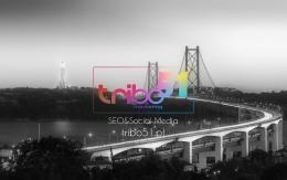 tribo-51